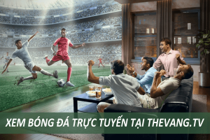 xem trực tiếp bóng đá thevang tv, bongda tv